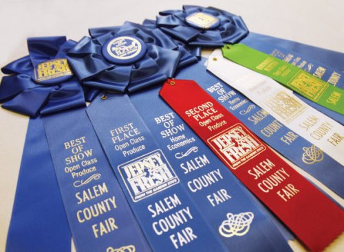 fair-ribbon-logojpg-61eb587e7f713bd3