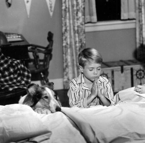 American animal actor Spook, as Lassie, sits next to child actor Jon Provost, as Timmy, who prays in an episode of the television show 'Lassie' entitled 'Cully's New Pet,' July 12, 1960. The episode originally aired September 25, 1960. (Photo by CBS Photo Archive/Getty Images)